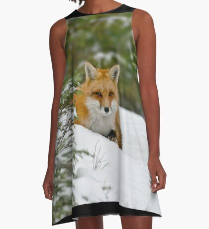 Red Fox In Snow A-Line Dress
