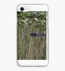 Everglades Reflection -  P7781_1 iPhone Case/Skin