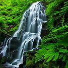 Fairy falls by Tomas Kaspar