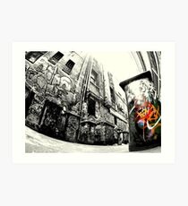 Laneway Bin.... Art Print