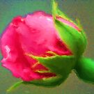 Roses Are Not Always Red by Lorelle Gromus