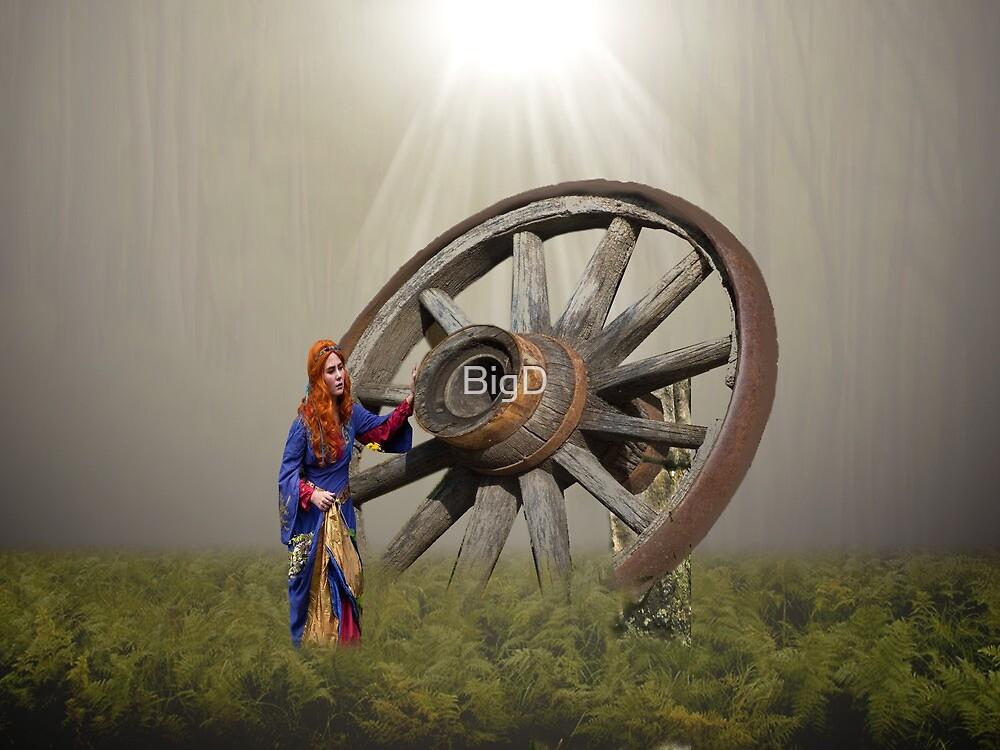 Big Wheel by BigD
