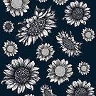 Assorted Beautiful Sunflowers by Lukasz  Czyzewski