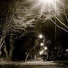 Starlit Path by Richard Pitman