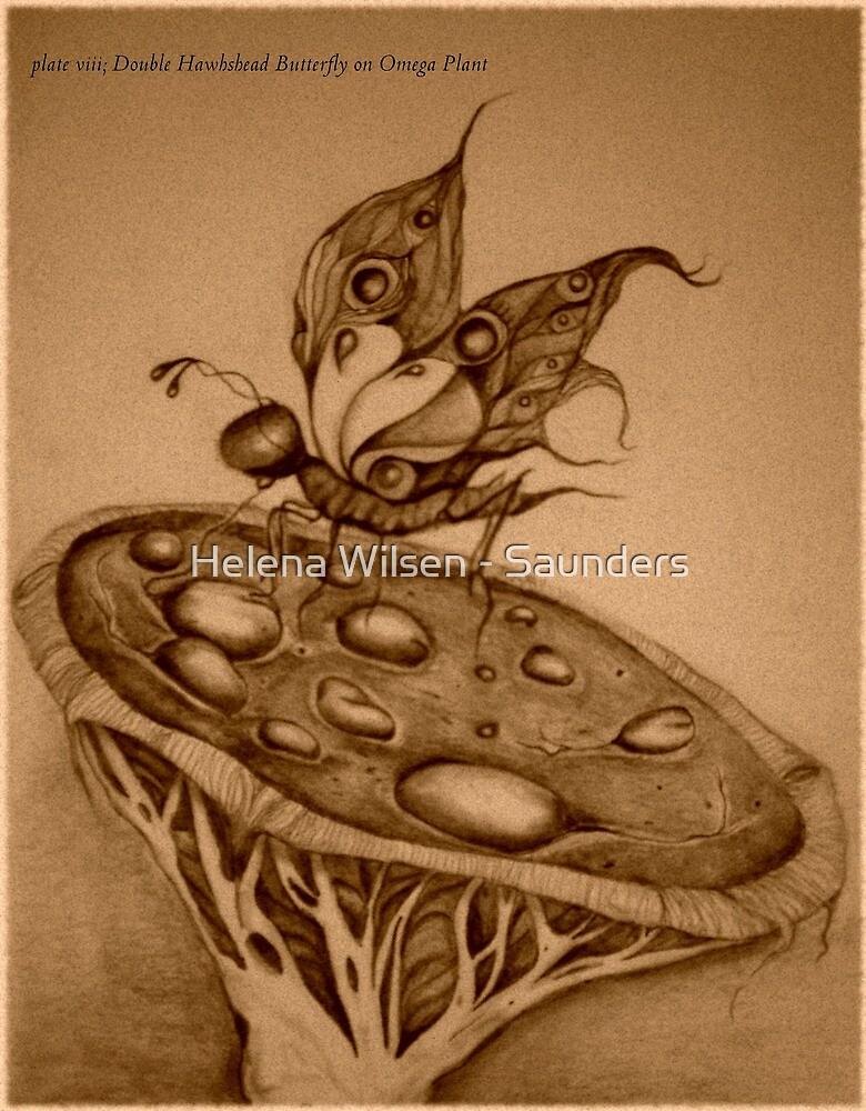 Double Hawkshead Butterfly Sepia Photo by Helena Wilsen - Saunders