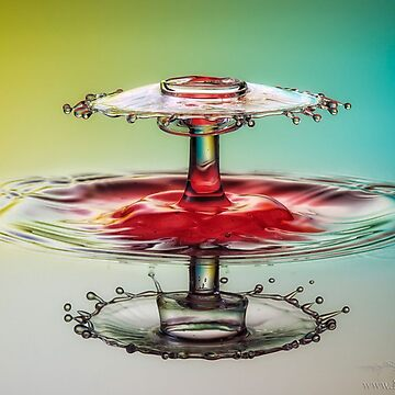 Water, Liquid, Still life photography, drop, wet, drink, nature, liquid, reflection, purity, motion by znamenski