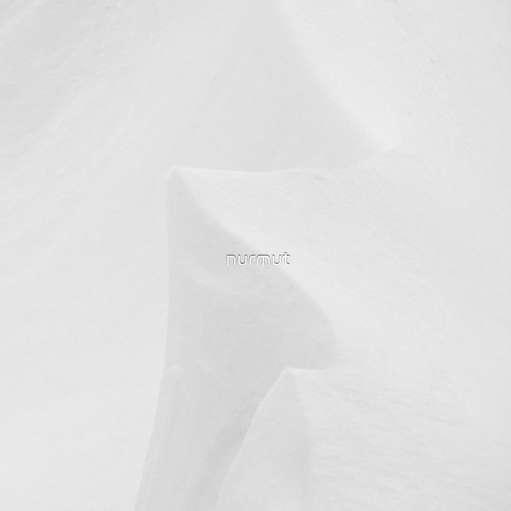 Snowscape 3 von nurmut