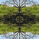 Tree Goddess by Ken Humphreys