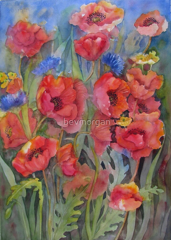 For the Love of Poppies by bevmorgan