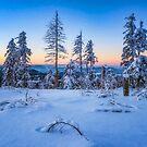Winter Attire by Philippe Sainte-Laudy