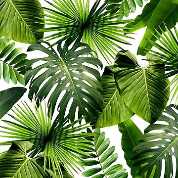 Green Tropical Leaves by procrest