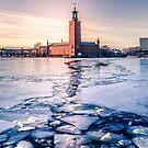 «Ayuntamiento de Estocolmo en invierno» de Nicklas Gustafsson
