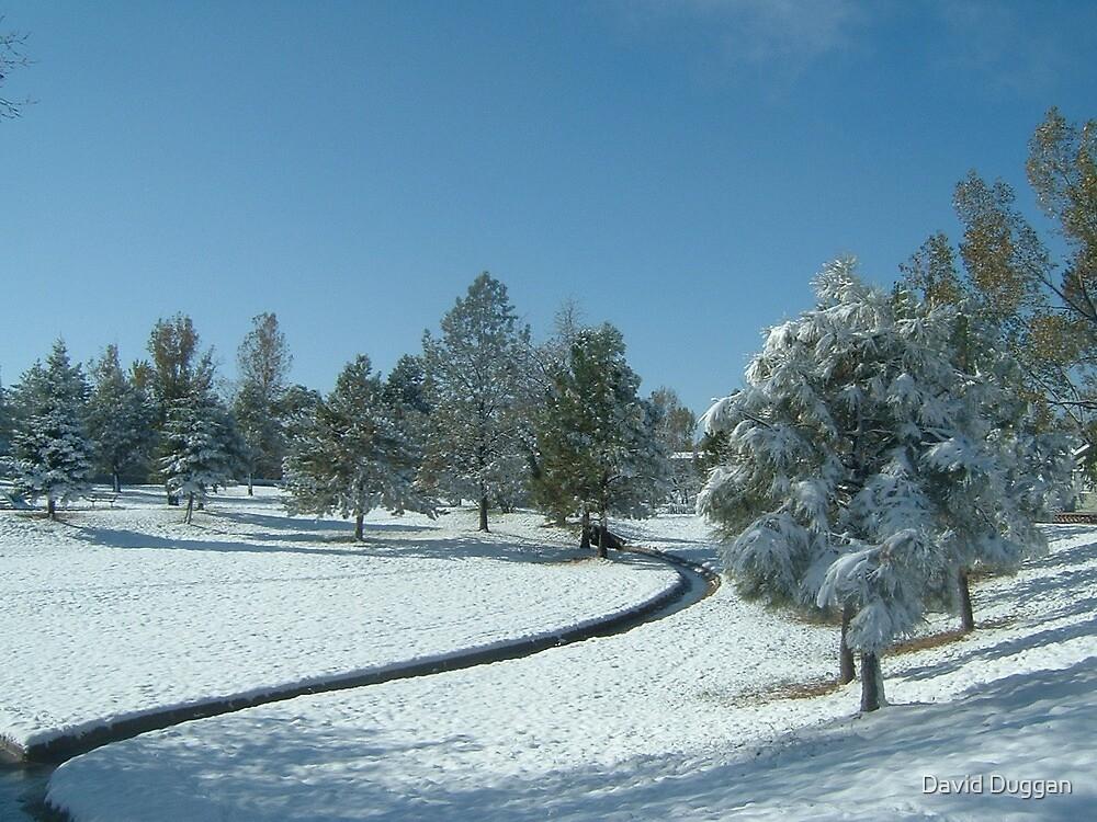 Snow scene with creek by David Duggan
