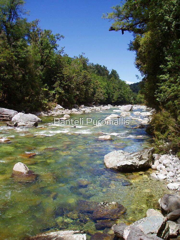 Upper Rough River - New Zealand South Island by Panteli Pyromallis