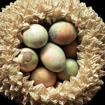 Nest by mand3rz