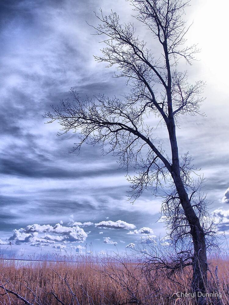 single tree 2 by Cheryl Dunning
