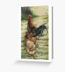 Free Range Chickens Greeting Card