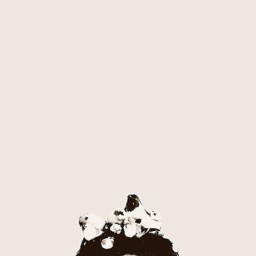 Darren Criss Herring&Herring Photoshoot by xmisscriss