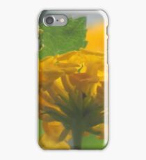 Lantana Through A Glass Dimly iPhone Case/Skin
