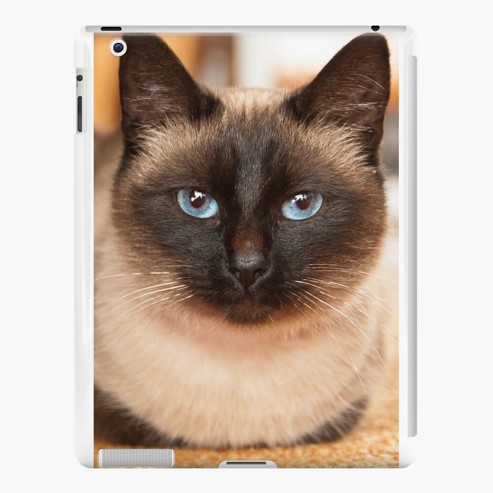 Siamesische Katze iPad-Hüllen & Klebefolien