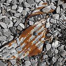 Rust Never Sleeps - 1 by Eric Scott Birdwhistell