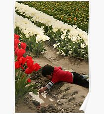Best Part of the Tulip Field is the Puddle Poster