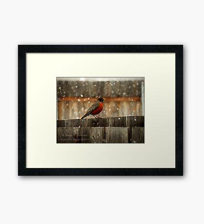 Cold Day Framed Print