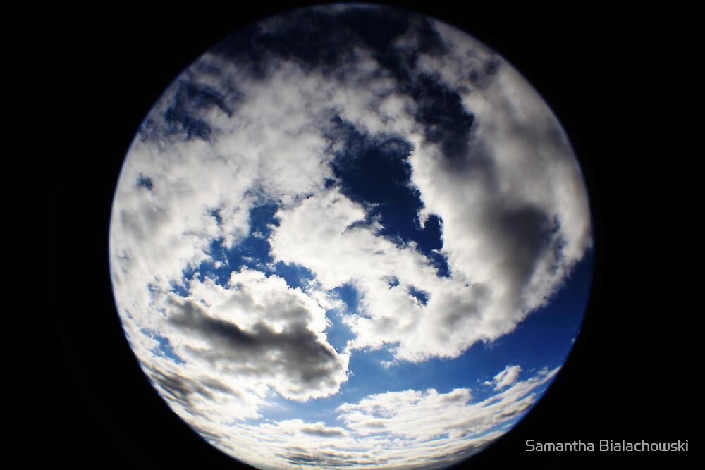 Planet Earth by Samantha Bialachowski