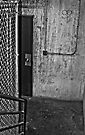 The Door by Eric Scott Birdwhistell