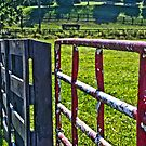 Farm Gate by Eric Scott Birdwhistell