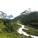 lachung  by sirenmapra