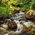 The Relaxing River by DafyddEm