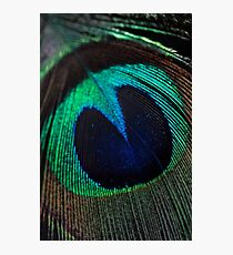 Just a feather. Photographic Print