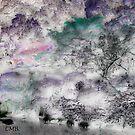 Kanshoniwa - a garden of contemplation by collin