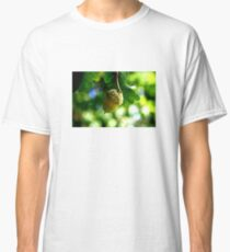 From little acorns grow mighty oaks Classic T-Shirt