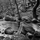 Padley Gorge II by Mabs