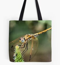 RED-VEINED DROPWING - Family Libellulidae dragon fly Tote Bag