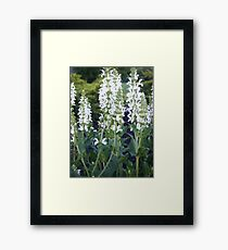 Ten Feet Framed Print