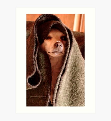 Master Obi-Wan Kenobi Chihuahua  Art Print