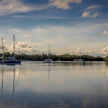 Port Douglas River Cruise by infinitephotos