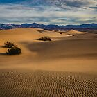 Death Valley Mesquite Dunes Sun Rise Side Light by photosbyflood
