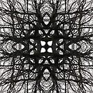 black and white woven tree branches by AaronHillebrand