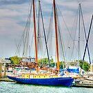 Sailing Ship St. Augustine Florida by Scott Englund
