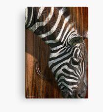 the zebra Leinwanddruck