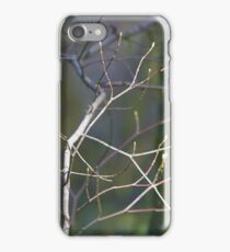 in the forest, spring's lattice... iPhone Case/Skin