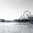 Frosted Santa Monica Pier by stine1