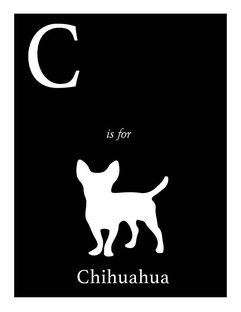 C is for Chihuahua by mohollaren