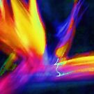 Bird of Paradise Abstract by schiabor