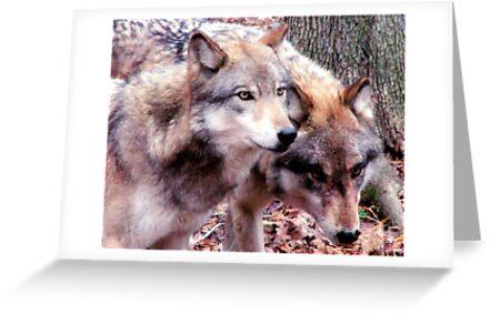 Wolves by Vendla