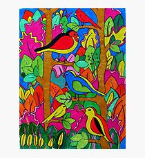 birds in the trees Photographic Print
